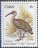 Ciskei 1981 Definitive - Birds h