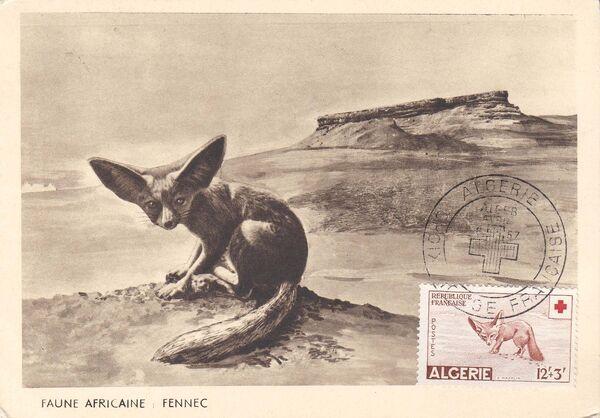Algeria 1957 Red Cross MCc