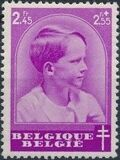 Belgium 1936 National Anti-Tuberculosis Society - Prince Boudewijn h