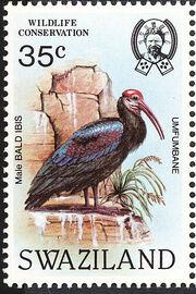 Swaziland 1984 WWF Southern Bald Ibis b
