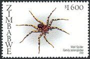 Zimbabwe 2003 Spiders f