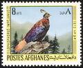 Afghanistan 1973 Birds a.jpg
