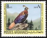 Afghanistan 1973 Birds a