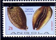 Angola 1981 Sea Shells Overprinted c