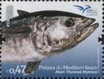 Portugal 2016 Fishes of the Mediterranean a