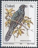 Ciskei 1981 Definitive - Birds i