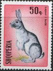 Albania 1967 Hares and Rabbits f