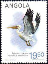 Angola 1984 Local Birds d