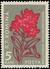 Romania 1957 Carpathian Mountain Flowers a