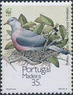 Madeira 1991 WWF Trocaz Pigeon c