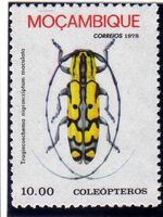 Mozambique 1978 Coleoptera from Mozambique f