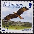Alderney 2002 Migrating Birds Part 1 Raptors b.jpg