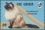 Gambia 1993 Oriental Cats b