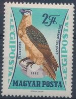 Hungary 1962 65th Anniversary of the Agricultural Museum - Birds of Prey f