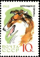 Soviet Union (USSR) 1965 Hunting and Service Dogs h