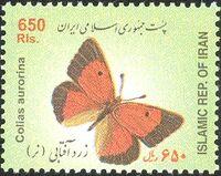 Iran 2004 Butterflies a
