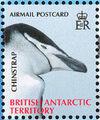 British Antarctic Territory 2008 Penguins of the Antarctic a.jpg