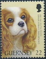Guernsey 2001 Centenary of Guernsey Dog Club a