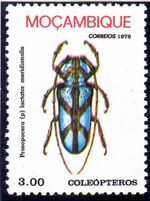 Mozambique 1978 Coleoptera from Mozambique d