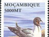 Mozambique 2002 Sea Birds of the World