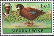 Sierra Leone 1982 Birds from 1980 Imprint 1982 l