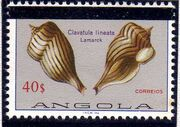 Angola 1981 Sea Shells Overprinted m