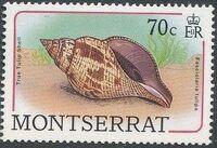 Montserrat 1988 Sea Shells h