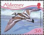 Alderney 2009 Resident Birds Part 4 (Waders) a