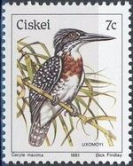 Ciskei 1981 Definitive - Birds g