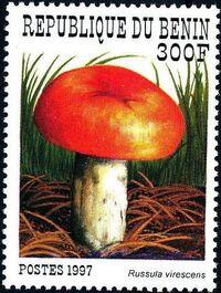 Benin 1997 Mushrooms e
