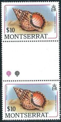 Montserrat 1988 Sea Shells gp