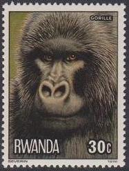 Rwanda 1978 Apes b