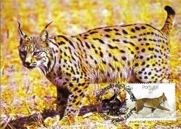 Portugal 1988 WWF Iberian Lynx (Lynx pardina) MCb