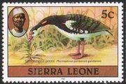 Sierra Leone 1982 Birds from 1980 Imprint 1982 d