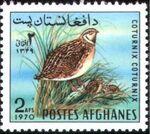 Afghanistan 1970 Wild Birds a