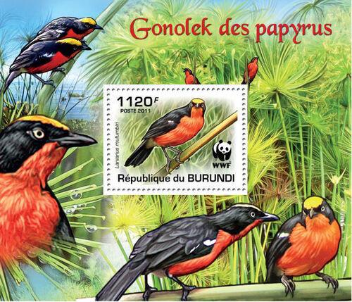 Burundi 2011 WWF Papyrus Gonolek m