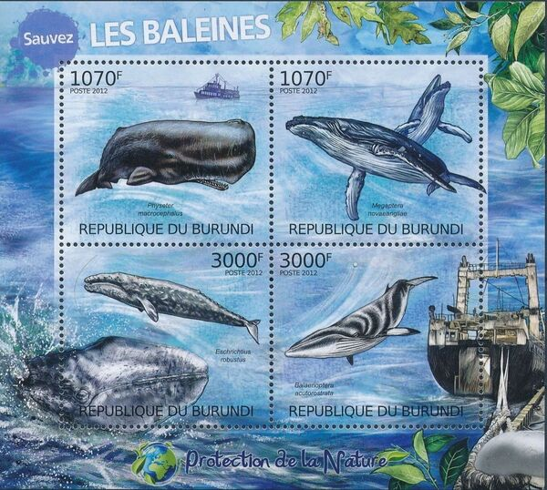 Burundi 2012 Protection of Nature - Save the Whales a