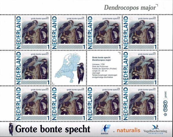 Netherlands 2011 Birds in Netherlands MS18