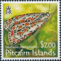 Pitcairn Islands 2007 Salt and Pepper Moth a