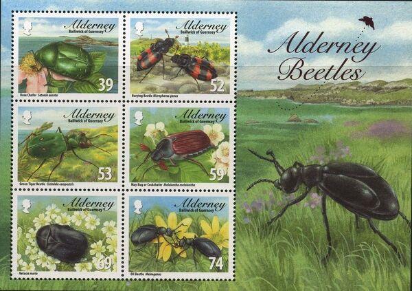 Alderney 2013 Alderney Beetles e