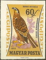 Hungary 1962 65th Anniversary of the Agricultural Museum - Birds of Prey k