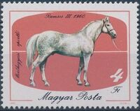Hungary 1985 200th Anniversary of Horse Keeping in Mezohegyes d