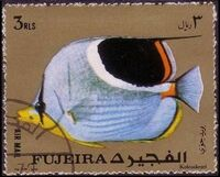 Fujeira 1972 Exotic Fishes i