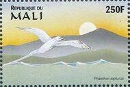 Mali 1997 Marine Life t