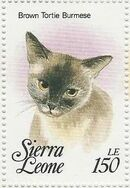 Sierra Leone 1993 Cats of the World y