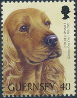 Guernsey 2001 Centenary of Guernsey Dog Club d