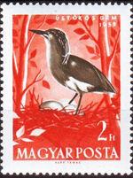 Hungary 1959 Water Birds g