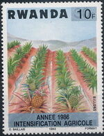 Rwanda 1986 Soil Erosion Prevention (Surcharged and Overprinted) b