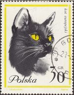 Poland 1964 European Cats a