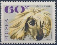 Poland 1969 Dogs c